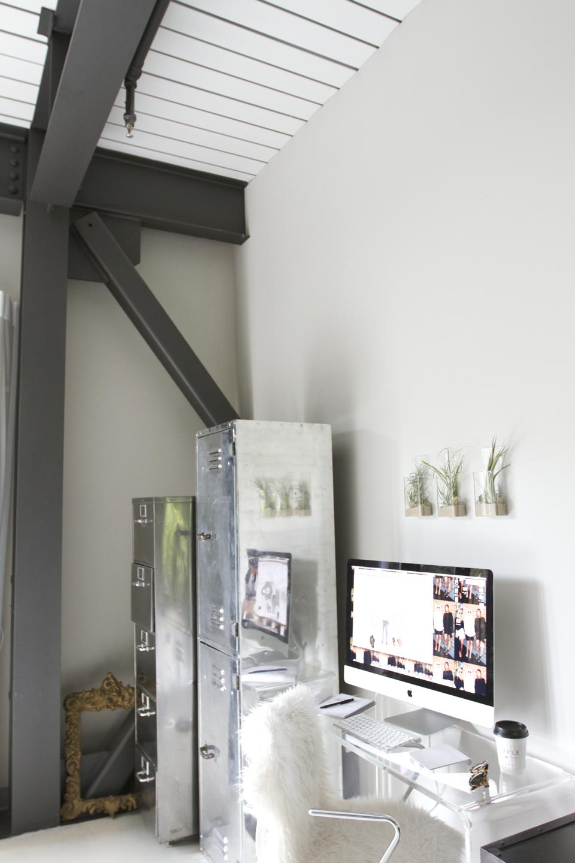 hanging-air-plants-13