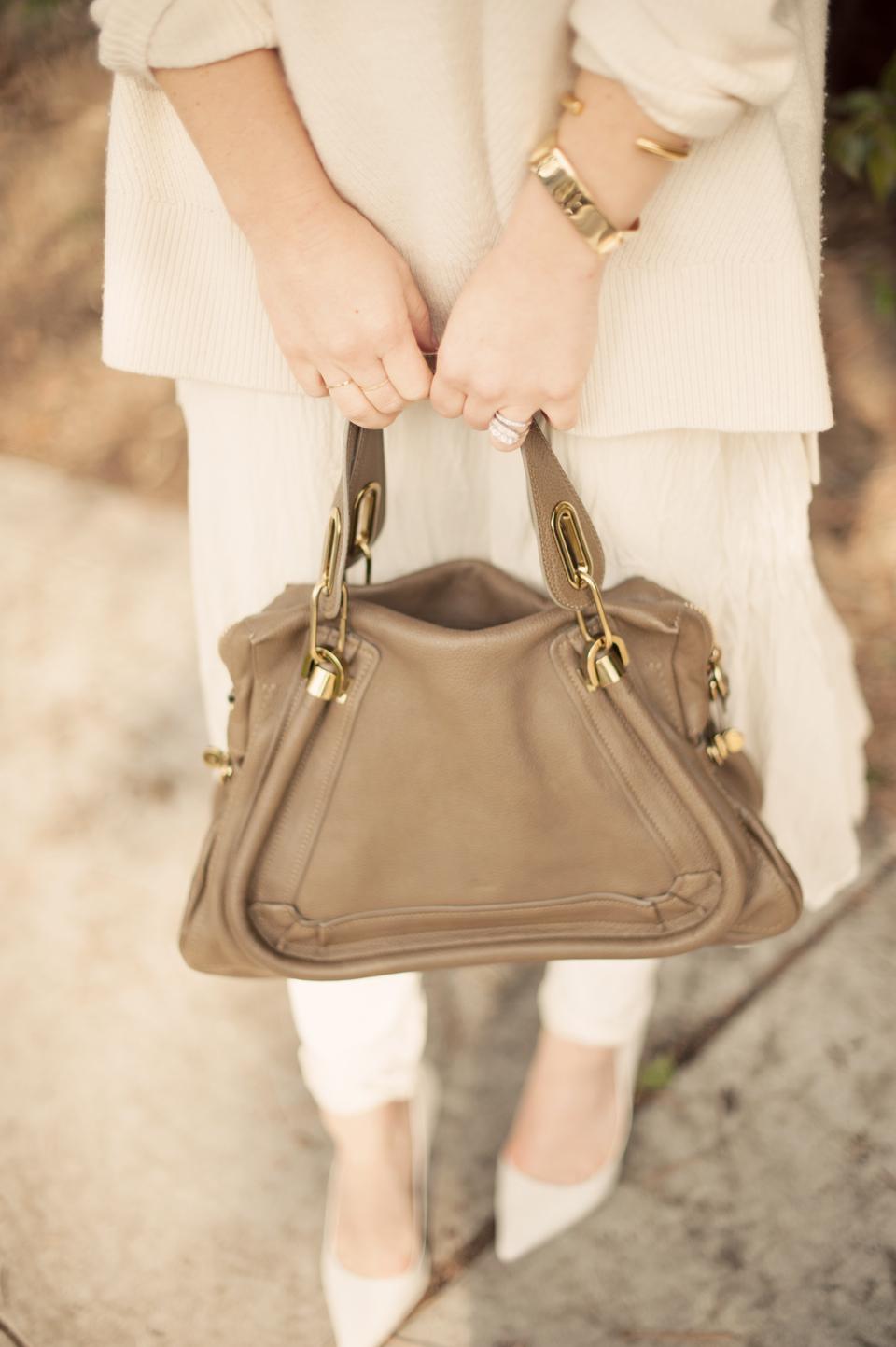cheetah-is-the-new-black-chloe-paraty-bag