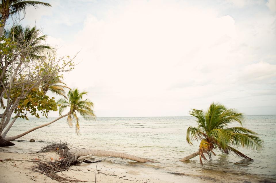 citnb-puerto-rico-travel-diary-02