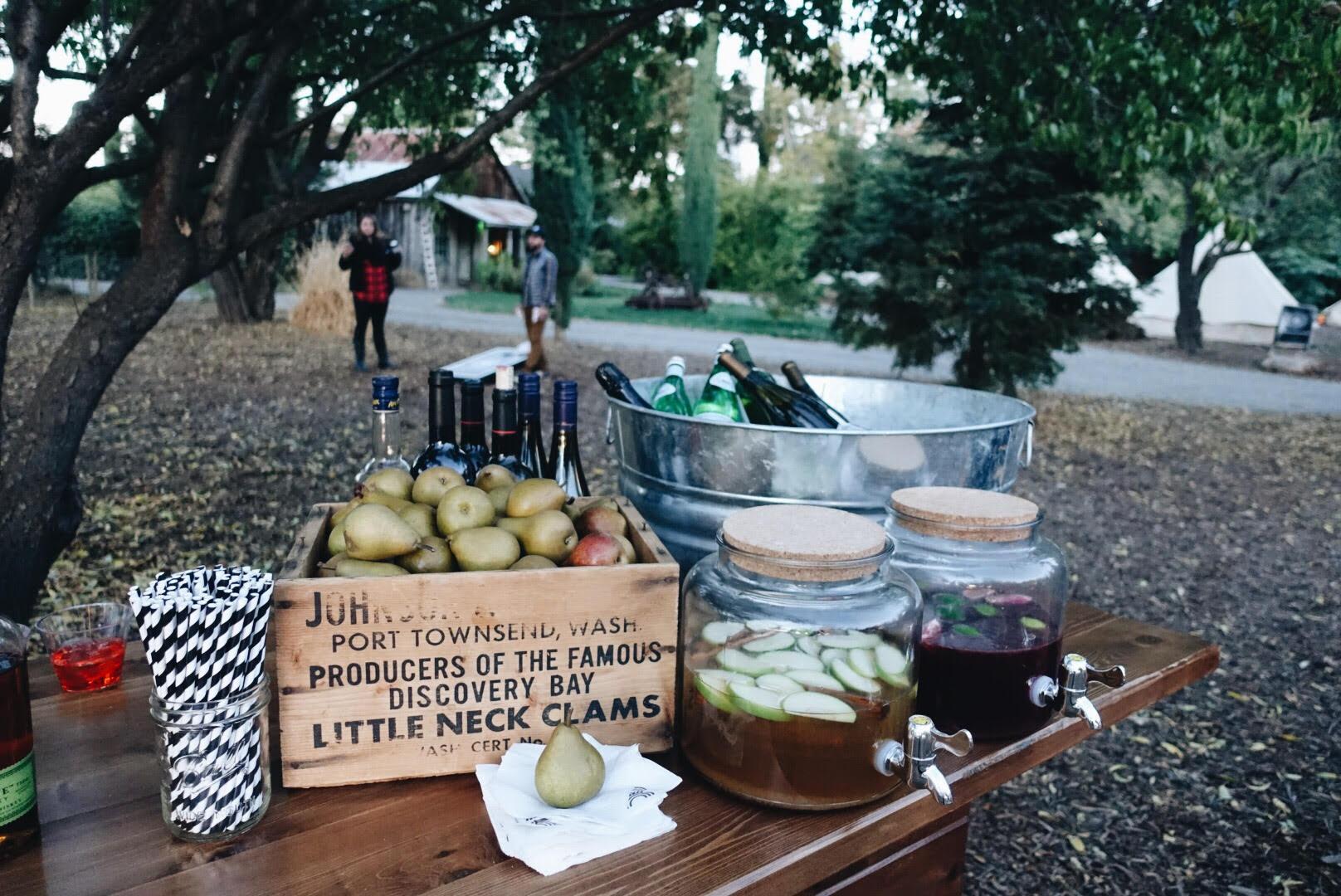 citnb-cobram-olive-oil-tasting-16