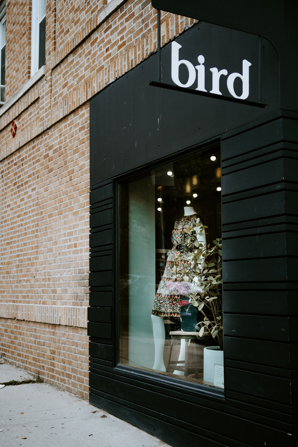 Shop Bird -- Cobble Hill New York