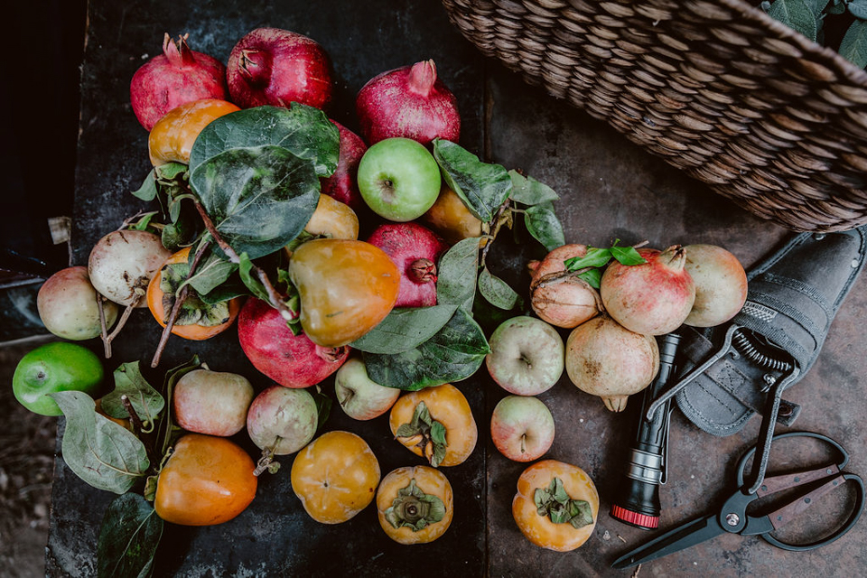 Autumnal Feast at Stoney Creek Ranch
