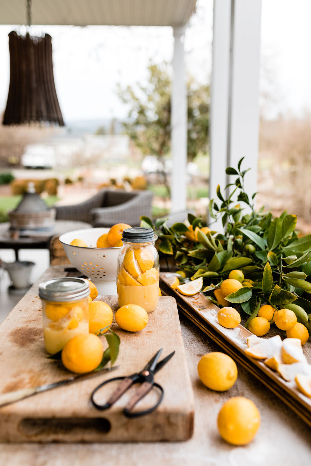 Lemon Preserving with Sarah Anderson of Chateau Sonoma